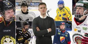 Här är sex av spelarna som tar plats på Hockeypuls lista. Foto: Bildbyrån.