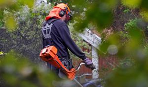 Erland Lundgren har förslag som han tror skulle minska antalet viltolyckor.Foto Hasse Holmberg