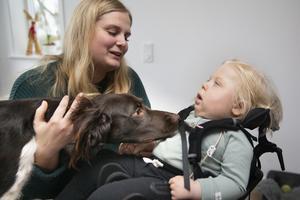De fyrafota vännerna. Familjens hundar är uppmärksamma på lille Valdemar.  Pojken är döv men föräldrarna vet att han känner dofter och hundarnas närvaro. Hunden Hjalmar är av rasen Kleiner Münsterländer. Foto: Kenneth Hudd.
