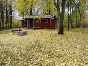 Bilden tagen måndag den 12 oktober vid Vågen i Bollnäs