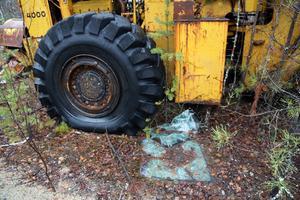 Krossat glas och annat som skräpar på marken innebär dessutom stor fara för djur som uppehåller sig i markerna.
