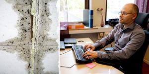 Bilder: Arkivbild/ Micke Engström. OBS: Bilden på mögel är inte hämtad från den aktuella byggnaden. Tomas Jonsson, Bygg- och Miljöchef i Bräcke och Ånge kommun.