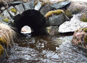 Vattenflödena i småbäckar och biflöden är redan höga.