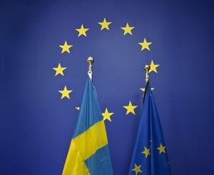 Skribenterna vill fördjupa det europeiska samarbetet. Foto Henrik Montgomery/TT