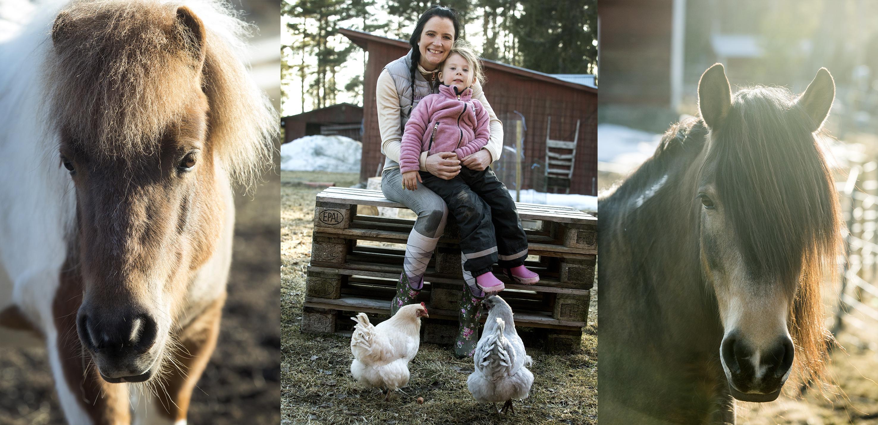Maria Andersson erbjuder djurmys på sin besöksgård: