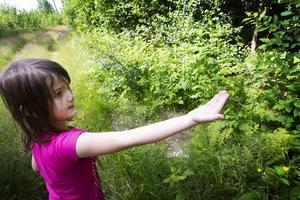 Minna Lindberg försöker få en fjäril att landa i hennes hand.