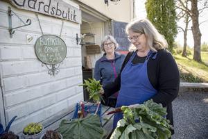 Anette Rundquist håller på att göra butiken färdig för säsongen tillsammans med sin svägerska Ann