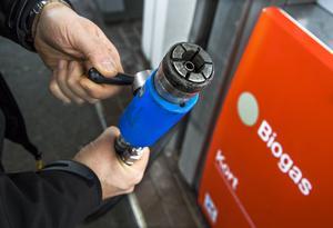 Skribenten ifrågasätter klimatnyttan med biobränslen. Foto: Claudio Bresciani/TT