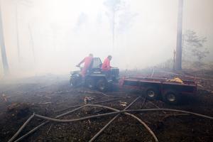 Den här branden bekämpades av Gästrike Räddningstjänst i augusti 2011 norr om Kungsgården.