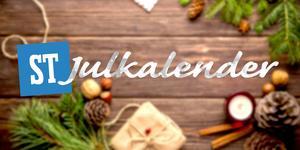 ST gläntar på dörren till olika företag – varje dag fram till julafton. Bild: Daria-Yakovleva/Pixabay