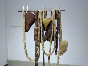 identitet. En del av installationen Identity Loss, där kroppsdelar hängts på tork.