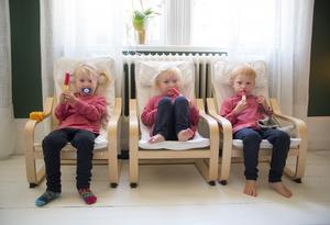 Trillingarna Florence, Dagny och Angcelo är tre år.