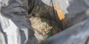 Avföring. Någon hade dumpat en säck med mänsklig avföring. Det kan vara från en husbilslatrin.
