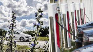 Elbilar och gratis bussresor är väl bra för vissa, men mycket lutar åt att det blir invånarna på landsbygden, med sina konventionella bensin- och dieselbilar, som får stå för notan, skriver Erika Sörengård. Bild: Tomas Oneborg/SvD/TT / Fredrik Sandberg/TT