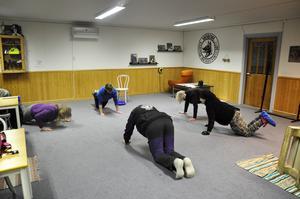 Först är det uppvärmning för kursens tvåbenta deltagare.  Sara Karlsson är instruktör och håller i kursen.