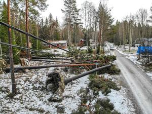 Under stormen Alfrida härom veckan slogs elen ut över ett stort område i vår kommun. Det visade sig finnas mycket dålig beredskap för det, skriver Magdalena Rinaldo. Foto: Henrik Ismarker, Spillersboda flygfoto.