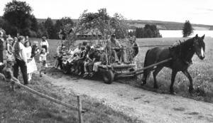 Barnen i Marieby anländer med häst och vagn till sitt midsommarfirande 1981. Fotograf: Christer Moberg.