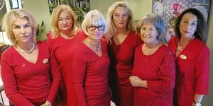 Kvinnorna i 1,6 miljonerklubben i Gävle som sammanställt programmet till temakvällen om mäns våld mot kvinnor: Anneli Sjölin, Ulla Carlberg, Karin Henriksson, Karin Östhol, Mai Kandler och Anette Källström.