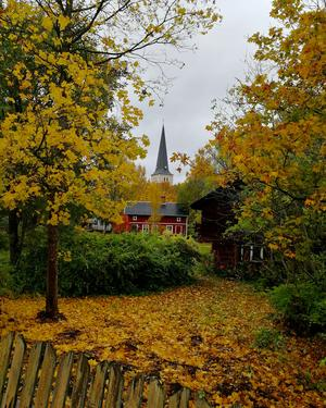 En fin vy på Norbergs kyrka som dök upp mellan höstträden på promenaden.                                Foto: Sara Bäckman