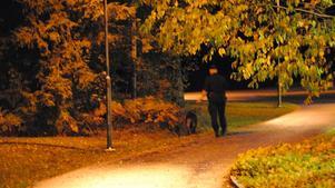 En yngre man blev på söndagen skuren i magen vid Skogstorpsskolan i Kumla. Polisen är på plats med hundpatruller.Foto: Christian Gustafsson