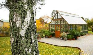 Växthuset matchar trädgården runt om.