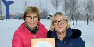 Demensföreningen Gagnefsflugans Hök Ann-Britt Forsberg och  Margareta Meissner  tycker att fler av Gagnefs makthavare borde ta chansen att lyssna till Demensförbundets ordförande Pär Rahmström.