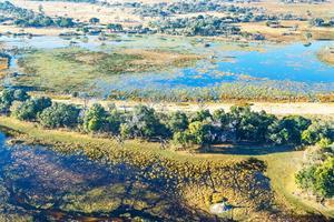 Det enorma Okavangodeltat är en vacker syn.