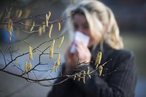 Rinnande ögon och näsa, trötthet och irriterade luftvägar är några av symtomen för pollenallergi.