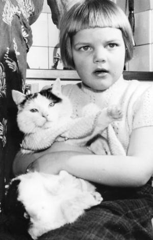 1958. Svanslösa katter i Harmånger. Om man färdas efter Vattrångsvägen och tittar in till hemmansägare Einar Tjernell, Vattrång, kan man finna en märkvärdig katt. Katten heter Pelle och är utan svans. Pelle låter sig skjutsas av Margareta i dockvagnen och på kvällarna när hon har gått och lagt sig kommer Pelle och ska ligga på hennes arm. Då lägger han sina tassar om hennes hals och kramar henne riktigt innan han lägger sig till ro.