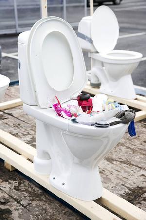 Totalt åtta toaletter ingick i demonstrationståget i Borlänge.