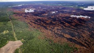 Skogsbranden i Västmanland 2014 slukade cirka 14 000 hektar vilket är lika mycket som ungefär 28 000 fotbollsplaner.