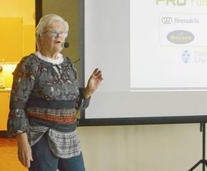 Birgitta Olsson föreläste om försäkringar.