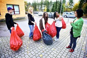 Åttondeklassarna Emil Danielsson, Lina Jansson, Kajsa Janze och Najma Adan Dahir tycker att