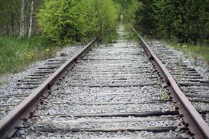 Två hundägare ersätts nu av Trafikverket för att deras hundar blivit påkörda av tåget.