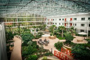 Den gemensamma trädgården är på 1600 kvadratmeter. Här samlas de som vill och fikar vid 11-tiden varje förmiddag.