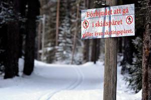 Elljusspåret i Ånge är ett av få skidspår i kommunen som fritidsenheten med säkerhet törs säga är framkomligt och åkbart.