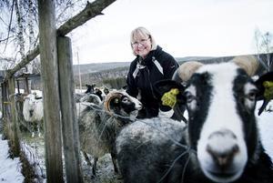 Ann-Marie Rosvall är ny ordförande för Svågadalsnämnden. Hon är född i Norrhavra och flyttade tillbaka till föräldrahemmet för snart fem år sedan.