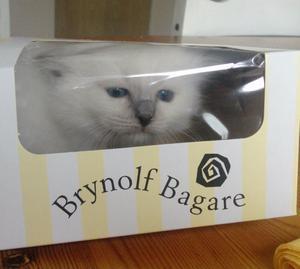 Det är inte bara vi människor som njuter av Brynolf Bagares vaniljsemlor. Även birman S*Skönheten's Jazmine lockades, fast mer av förpackningen. Som tur är hade jag mobilen framme och jag lyckades föreviga hennes fundersamma min innan hon backade ut igen. :)