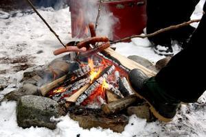 Värme. Aldrig är väl en eld så eftertraktad som under en vinterdag i skogen, då den tjänar sitt syfte både till korvgrillning och som tåvärmare.
