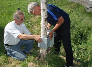 Leif Berglund och Roland Lundberg från Motormännens lokalklubb i Sundsvall monterar ett instrument för hastighetsmätning efter Mälandsrakan.
