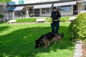 Polishundar hjälpte till i sökandet efter rånaren.