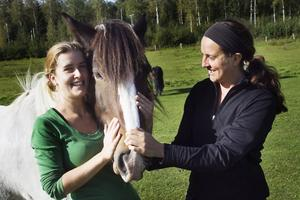 Lena Bergqvist och Anna Jansson har just kommit tillbaka från en ritt i skogen hos ett av landskapets alla hästföretag. De är jätteladdade att ta tag i sitt gamla hästintresse.