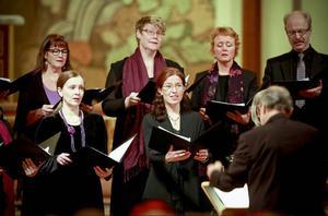 Med himmelen som tema sjöng kören Octava  i Stora kyrkan  i lördags.
