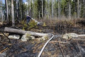 Det kunde ha blivit värre när en privatperson eldade löv och elden plötsligt okontrollerat började sprida sig till ett skogsparti i Stallbacken i Ås. Mannen ringde räddningstjänsten som snabbt kunde få bukt med elden.