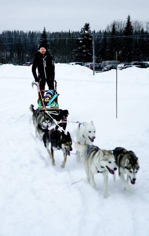 Allt handlade inte om snöskoter. Bland andra Meja Svanström och hennes storebror Ante Svanström från Strömsund åkte hundspann bakom fem siberian husky och en blandrashund. Förare var Benjamin Schaap från Laxsjö.