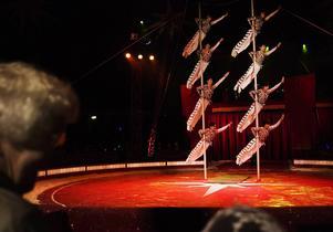 Cirkus Maximum anno 2006.