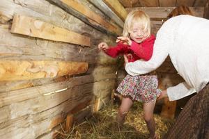 Hedvig Fors, 5, från Ås testar att hoppa i höet i barnladan på hembygdsgården, med lite hjälp av farmor Lisa Fors.