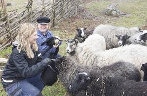 Djurpedagogen Rut Olofsson och intendenten Sofia Sjöström är glada att fåren har kommit till Norra berget – nästan en månad tidigare än i fjol.