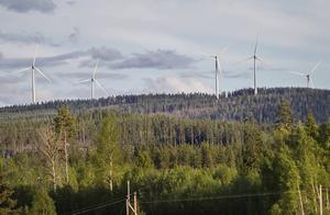 Miljödelegationen i Dalarna har gett tillstånd till maximalt 92 vindkraftverk på Kölvallen. Det här är en bild på Svartvallsberget.