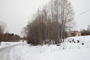 Här, där tvärbanan drogs fram, låg stationshuset i Täng. Järnvägen skapade liv och rörelse i bygden. Foto: Torbjörn Aronsson